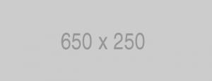 650x250